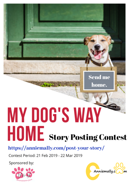 my-dog-s-way-home-story-posting-contest